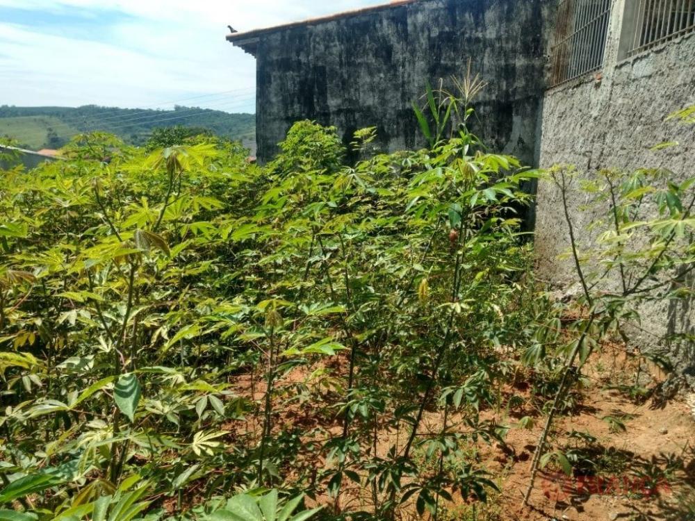 Comprar Terreno / Padrão em Jacareí apenas R$ 118.000,00 - Foto 3