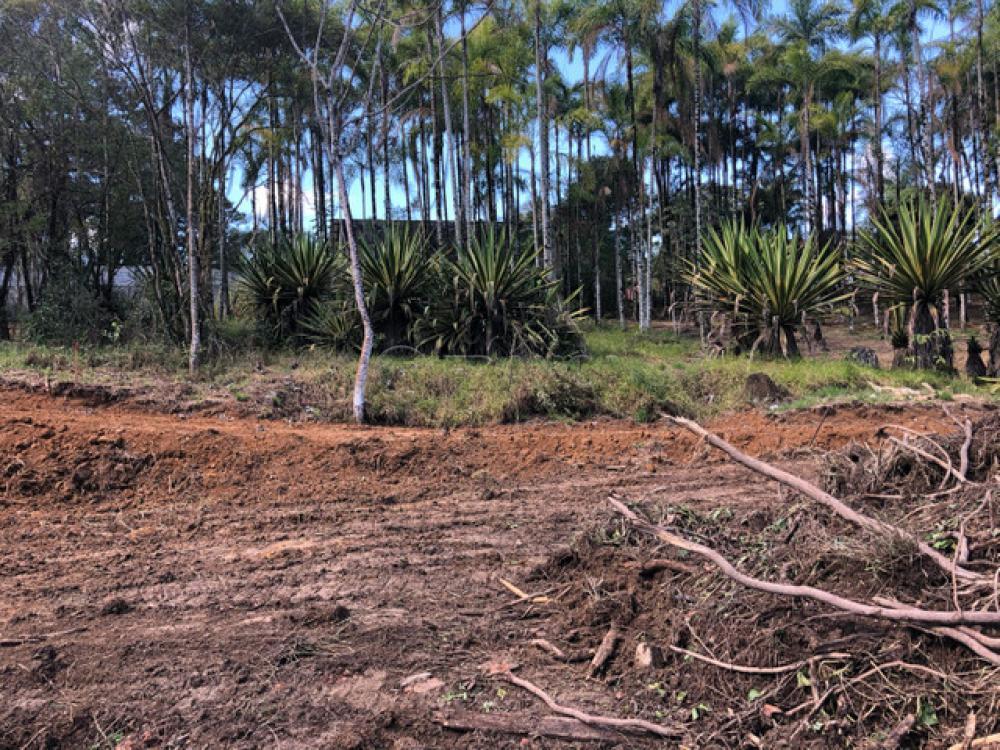 Comprar Terreno / Padrão em Monteiro Lobato apenas R$ 211.000,00 - Foto 1