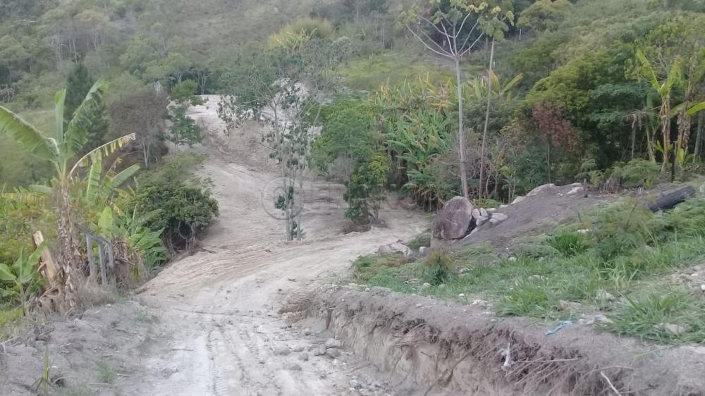 Comprar Rural / Chácara em Santa Branca R$ 100.000,00 - Foto 1