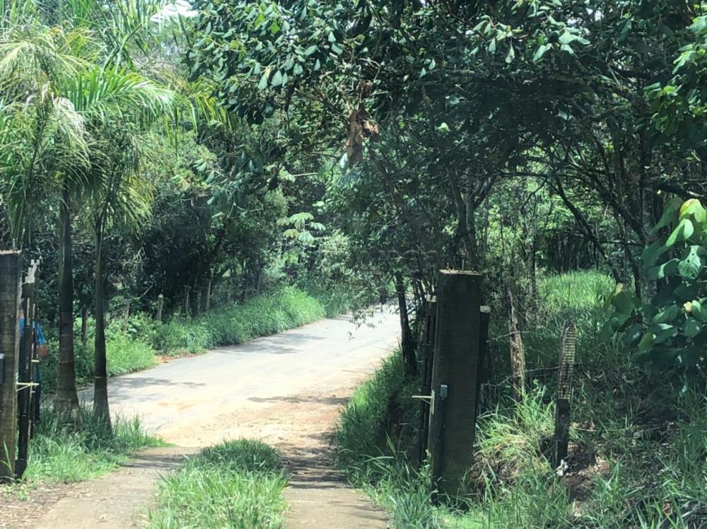 Comprar Rural / Chácara em São José dos Campos apenas R$ 163.000,00 - Foto 3
