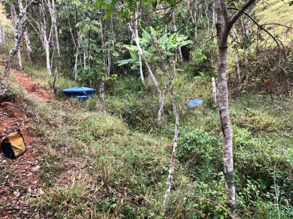 Comprar Rural / Chácara em São José dos Campos apenas R$ 163.000,00 - Foto 14