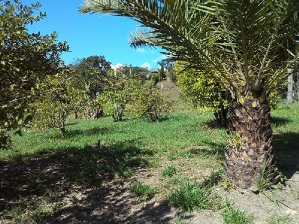 Comprar Rural / Chácara em Jacareí R$ 1.300.000,00 - Foto 1