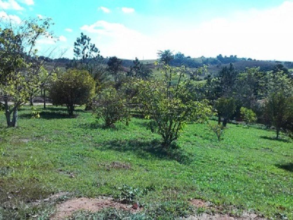 Comprar Rural / Chácara em Jacareí R$ 1.300.000,00 - Foto 3