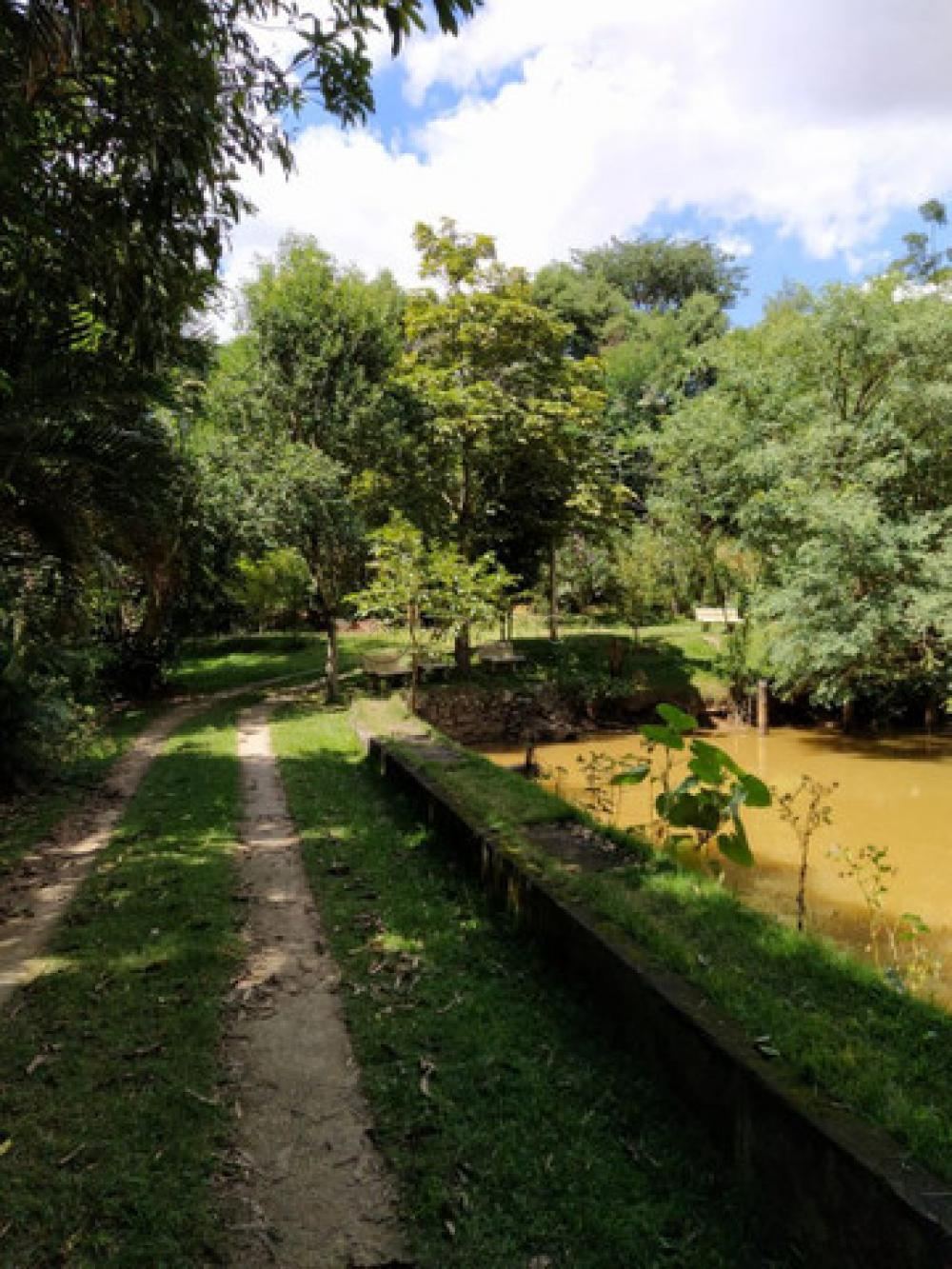 Comprar Rural / Chácara em São José dos Campos R$ 540.000,00 - Foto 4