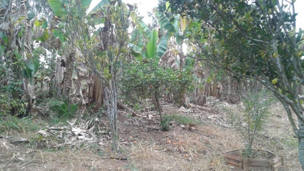 Comprar Rural / Chácara em São José dos Campos R$ 850.000,00 - Foto 5