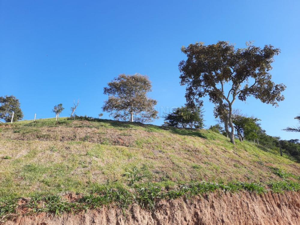 Comprar Rural / Chácara em Jambeiro R$ 120.000,00 - Foto 9