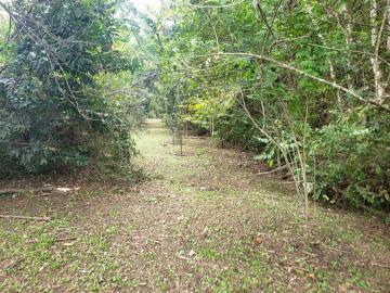 Comprar Terreno / Condomínio em Guararema apenas R$ 186.537,12 - Foto 7