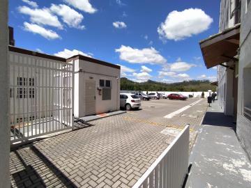 Alugar Apartamento / Padrão em Jacareí apenas R$ 800,00 - Foto 24