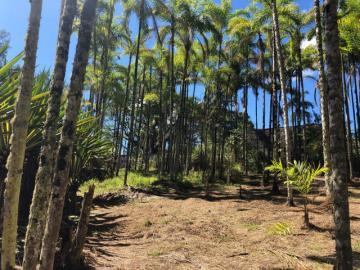 Comprar Terreno / Padrão em Monteiro Lobato apenas R$ 211.000,00 - Foto 3