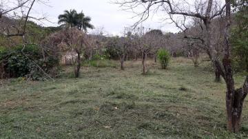 Comprar Rural / Chácara em Santa Branca apenas R$ 160.000,00 - Foto 4