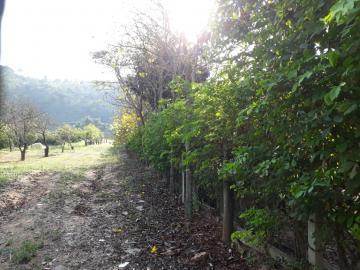 Comprar Rural / Chácara em Santa Branca apenas R$ 160.000,00 - Foto 21