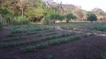 Comprar Rural / Chácara em São José dos Campos R$ 850.000,00 - Foto 10